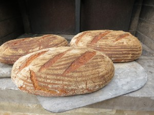Cook-for-three-days-French-bread-wood-burning-oven-single-fire