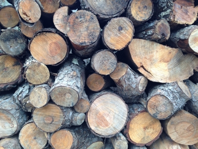 wood stacked loosely. This will season wood for use in a wood-burning oven.