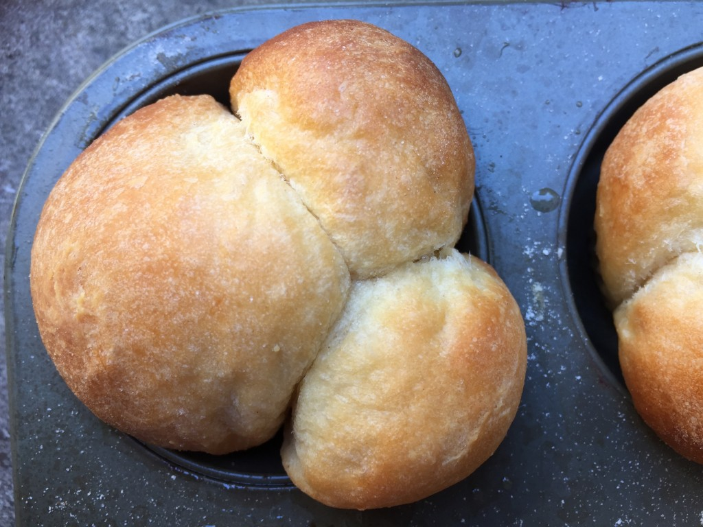 cloverleaf dinner rolls single wood-fired baking wood-fired oven pizza oven