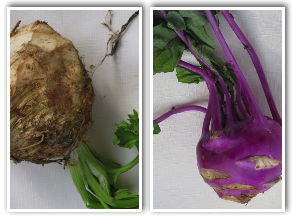 root vegetables from outer space
