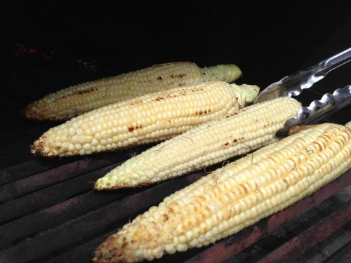 summer corn grilled for sweetness
