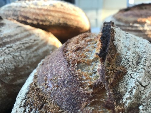 slow fermented bread